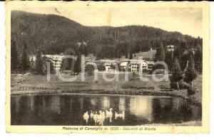 1949 MADONNA DI CAMPIGLIO (TN) Dolomiti di BRENTA *Cartolina ANIMATA oche FP VG