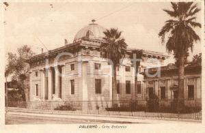 1926 PALERMO Veduta dell'orto botanico *Cartolina FP VG