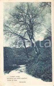 1924 ARTE Paesaggio fluviale con versi di Giovanni BERTACCHI *Cartolina FP NV
