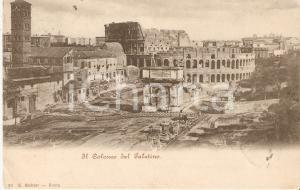 1901 ROMA Il Colosseo visto dal PALATINO *Cartolina FP VG