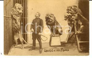 1910 ca FRANCE CIRCUS Dompteur Laurent et ses fauves *Carte postale VINTAGE FP
