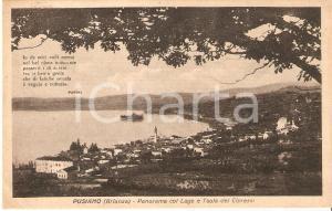 1950 ca PUSIANO (CO) Isola dei cipressi e lago di COMO Panorama *Cartolina FP NV
