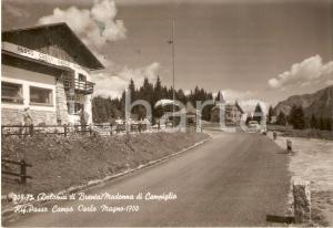 1955 MADONNA DI CAMPIGLIO (TN) Rifugio Passo Campo Carlo Magno *Cartolina FG VG