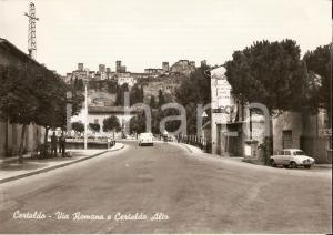 1955 ca CERTALDO (FI) Via Romana e Certaldo Alto - Panorama *Cartolina FG VG
