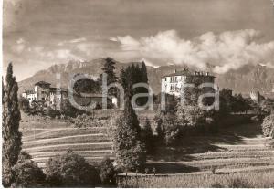 1950 TRICESIMO (UD) Panorama con Castello della Madonna *Cartolina FG VG