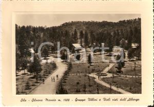 1955 ca SILVANA MANSIO (CS) Gruppo di villini e viali *Cartolina FG NV