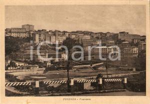 1950 ca POTENZA Panorama della città *Cartolina FG NV