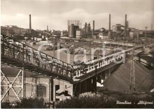 1955 PIOMBINO Altiforni dello stabilimento siderurgico - Veduta *Cartolina FG NV