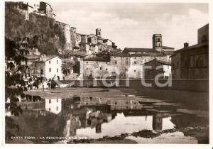 1954 SANTA FIORA (GR) La peschiera e le ripe *Cartolina FG VG