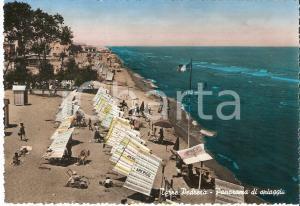 1955 ca RIMINI - TORRE PEDRERA Stabilimento balneare AMERIGO *Cartolina FG NV