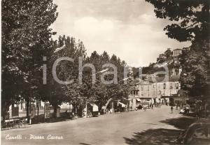 1955 ca CANELLI Panorama di Piazza Cavour - Insegna RICCADONNA *Cartolina FG NV