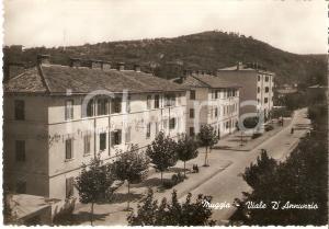 1950 ca MUGGIA (TS) Panorama di viale D'Annunzio *Cartolina FG NV