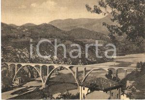 1950 ca PINZANO AL TAGLIAMENTO - RAGNOGNA Veduta del ponte *Cartolina FG NV