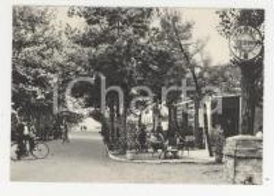 1952 IGEA MARINA Veduta con Bar Stazione e viale Quinto Ennio *Cartolina ANIMATA