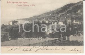 1903 VENTIMIGLIA Frazione LATTE Veduta dei giardini botanici HANBURY *Cartolina