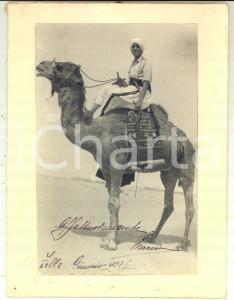1928 ZELLA (LIBIA) Ufficiale italiano a dorso di dromedario - Foto 20x25 cm
