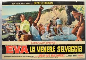 1968 EVA LA VENERE SELVAGGIA Esmeralda BARROS Adriana ALBEN Fotobusta 66x46 (1)