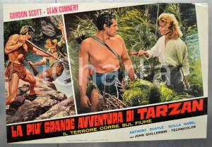 1964 LA PIÙ GRANDE AVVENTURA DI TARZAN Gordon SCOTT Fotobusta 66x46 cm