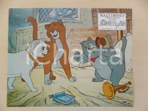 1970 GLI ARISTOGATTI Walt DISNEY - Romeo, Duchessa e Scat cat *Lobby card 28x23