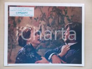 1976 L'INNOCENTE Lite tra Laura ANTONELLI e Giancarlo GIANNINI *Lobby card 29x23