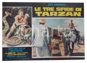 1963 LE TRE SFIDE DI TARZAN Jock MAHONEY in groppa a un elefante *Lobby card
