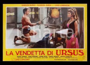 1961 LA VENDETTA DI URSUS Samson BURKE Wandisa GUIDA *Lobby card PEPLUM 63x45