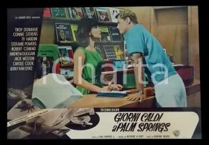 1963 GIORNI CALDI A PALM SPRINGS Troy DONAHUE Stefanie POWERS *Lobby card 63x45