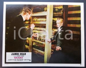 1970 ca IL GIGANTE James DEAN durante una rissa *Lobby card EDIZIONE FRANCESE