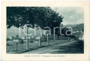 1937 LANZO D'INTELVI (CO) Viale alberato verso BELVEDERE *Cartolina FG VG