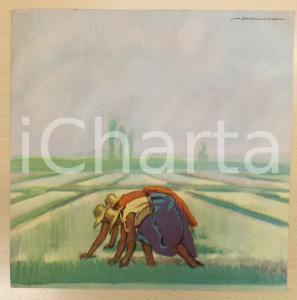 1950 ca Marcello DUDOVICH Mondine al lavoro in una risaia *Stampa 23x23 cm