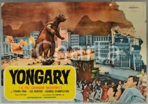 1967 YONGARY Oh YEONG-LI Nam JEONG-IM - Fotobusta DANNEGGIATA 66x46 cm