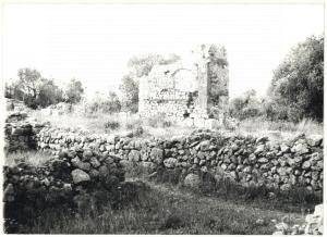1979 COSA (GR) Scavi archeologici - Veduta sui resti della basilica *Foto 18x13