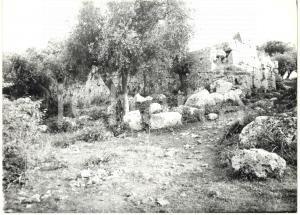 1979 COSA (GR) Scavi archeologici - I resti della porta romana *Fotografia 18x13