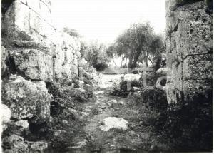 1979 COSA (GR) Scavi archeologici - Resti della porta romana *Fotografia 18x13