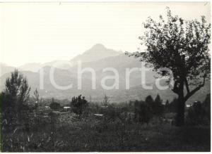 1974 BARGA / CASTELVECCHIO PASCOLI - Veduta panoramica -