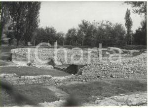 1981 BENE VAGIENNA Scavi archeologici - Resti di una basilica paleocristiana