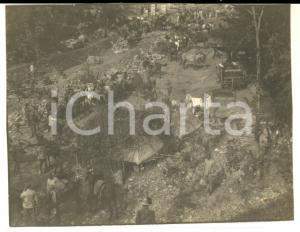 1917 WW1 ZONA DI GUERRA Accampamento italiano con cavalli *Foto 10x8 cm