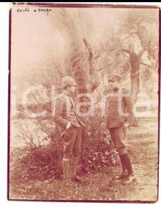 1917 WW1 VALONA (ALBANIA) Ufficiali italiani tra gli ulivi *Foto DANNEGGIATA