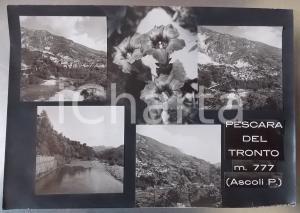1960 ca PESCARA DEL TRONTO (AP) Panorama *Bozzetto per cartolina 40x28 cm