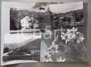 1960ca FELTRE Frazione LAMEN Vedutine *Bozzetto preparatorio per cartolina 38x27