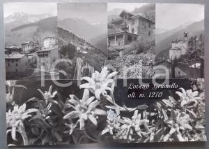 1960 ca PAISCO LOVENO - Loveno Grumello *Bozzetto preparatorio cartolina 40x28