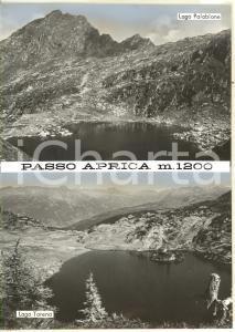 1965 ca PASSO APRICA Lago Palabione - Lago Torena *Bozzetto per cartolina 15x21