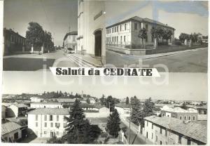 1970 ca CEDRATE / GALLARATE  Vedutine - Scuole  *Bozzetto per cartolina 30x21
