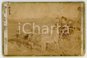 1891 ANZIO Fratelli TALENTI bambini su calesse con asinelli - Foto RARA 16x11