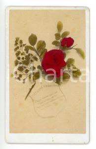 1900 ca ENGLAND Fotografia augurale con ramo di rose *CDV colorata a mano