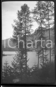 6X4cm NEGATIVO ORIGINALE* 1930 LAGO DI MISURINA Panorama tra gli alberi