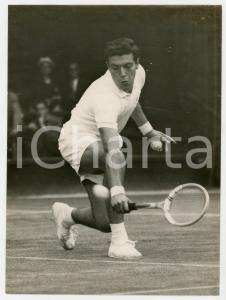 1955 LONDON WIMBLEDON Tennis - Nicola PIETRANGELI vs Tony MOTTRAM *Photo 15x20
