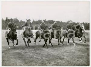 1960 ASCOT Windsor Forest Stud - British Olympic HORSE TRIAL Team training
