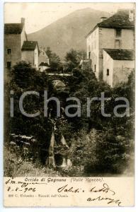 1904 VALLE VIGEZZO Scorcio dell'ORRIDO DI GAGNONE *Cartolina FP VG