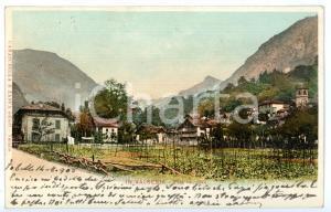 1903 PILA (VC) Veduta del caseggiato con campi coltivati *Cartolina FP VG